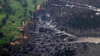 MOSOP decries prolonged delay of Ogoni cleanup